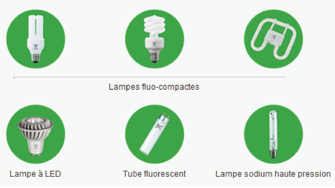 lampes qui se recyclent